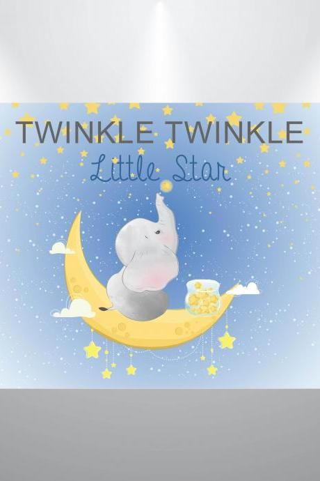 Twinkle Little Star Baby Shower Backdrop- Boy or Girl