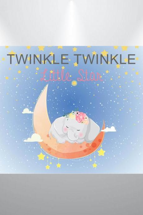 Twinkle Little Star Baby Shower Backdrop- Girl